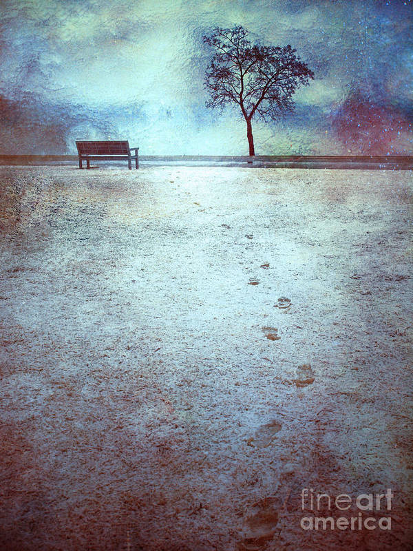 Bench Poster featuring the photograph The Last Snowfall by Tara Turner