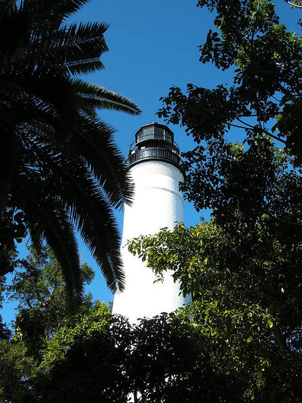 Lighthouse Poster featuring the photograph The Lighthouse by Audrey Venute