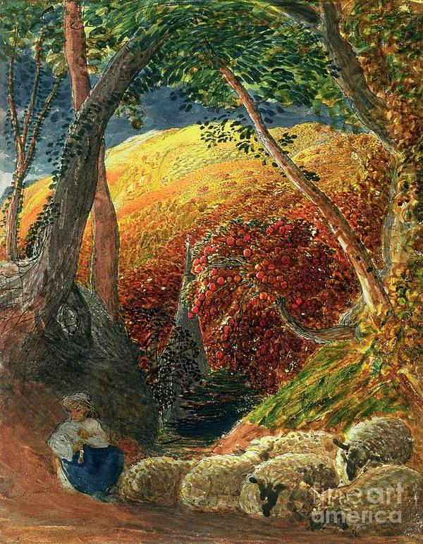 The Magic The Magic Apple Tree (indian Ink & W/c) By Samuel Palmer (1805-81) Poster featuring the painting The Magic Apple Tree by Samuel Palmer