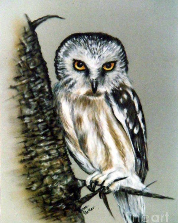 Owl Poster featuring the painting The Owl Heres looking at you by Lynne Parker