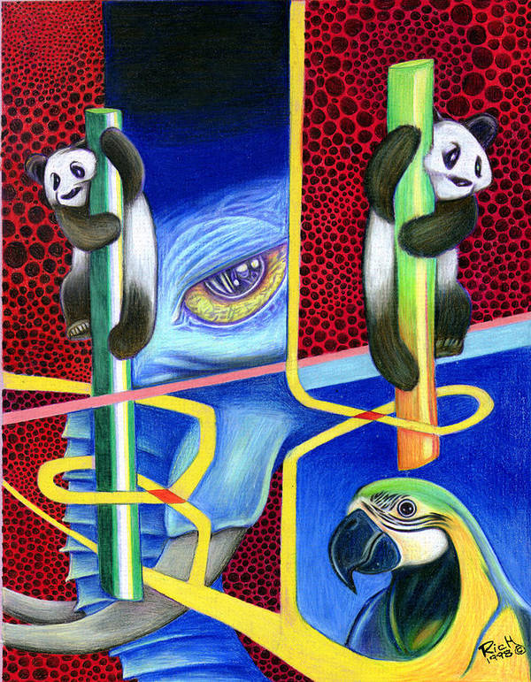 Pandas Poster featuring the drawing The Pandas by James Hammons