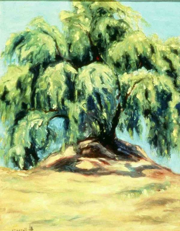 Pepper Tree24 Poster featuring the painting The Pepper Tree by Helen O Hara