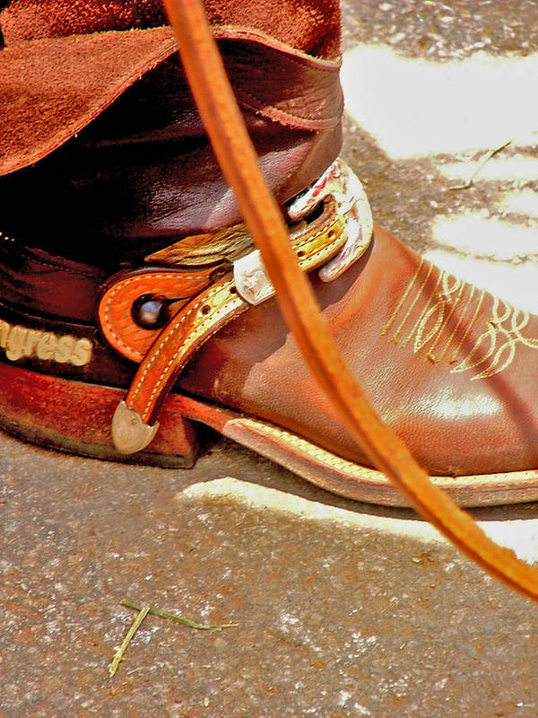 Horse Poster featuring the photograph These Boots Were Made For Riding by Donna Thomas