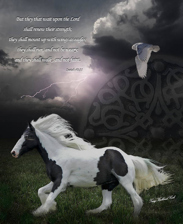 Equine Poster featuring the photograph They Shall Run And Not Be Weary by Terry Kirkland Cook
