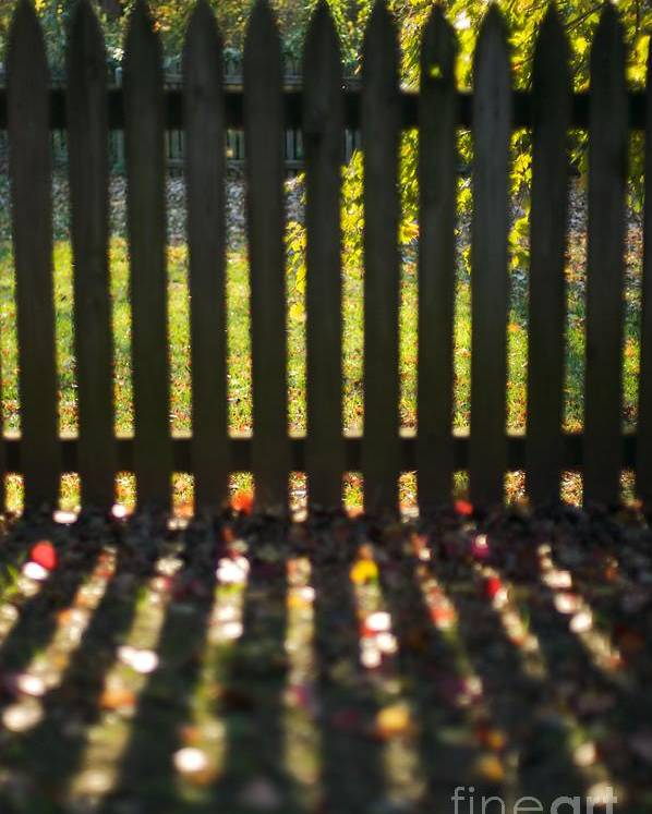 Fence Poster featuring the photograph Through The Fence by Hideaki Sakurai