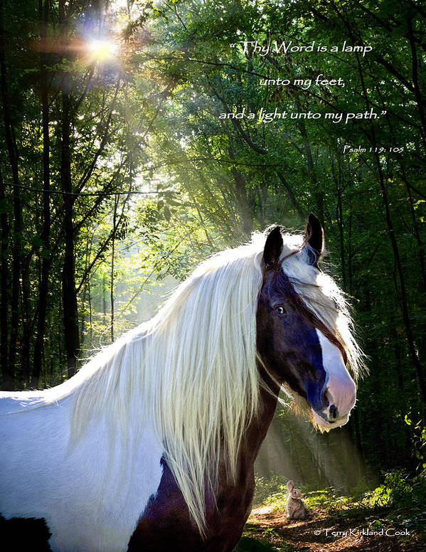 Equine Poster featuring the photograph Thy Word Is by Terry Kirkland Cook