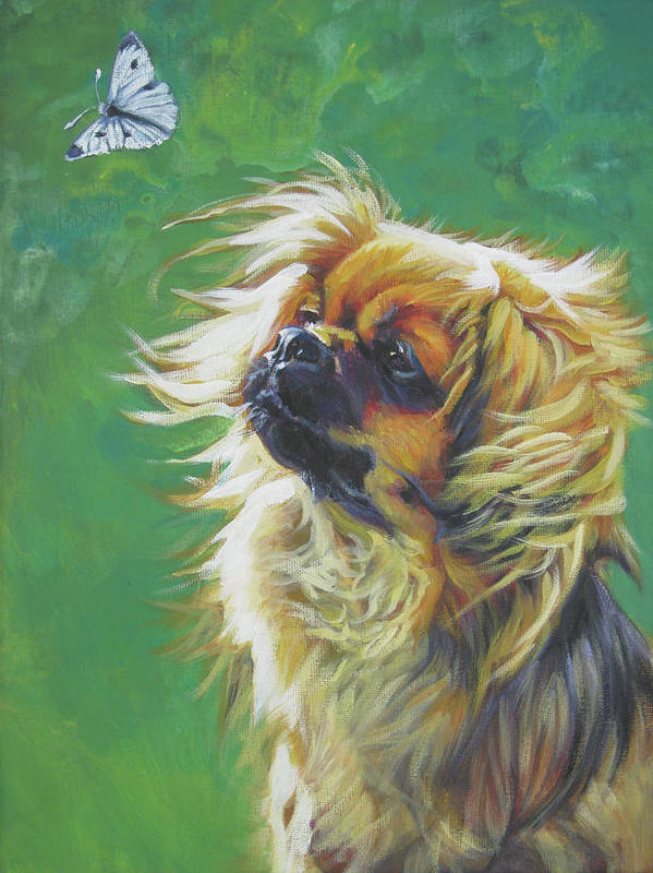 Tibetan Spaniel Poster featuring the painting Tibetan Spaniel And Cabbage White Butterfly by Lee Ann Shepard