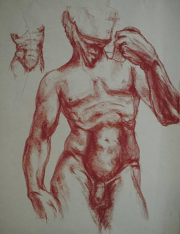 Poster featuring the drawing Torso Of Michelangelo  David by Chris Riley