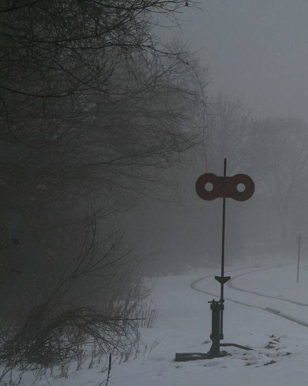 Fog Poster featuring the photograph Tracks In Fog by Rachel Ann Foster