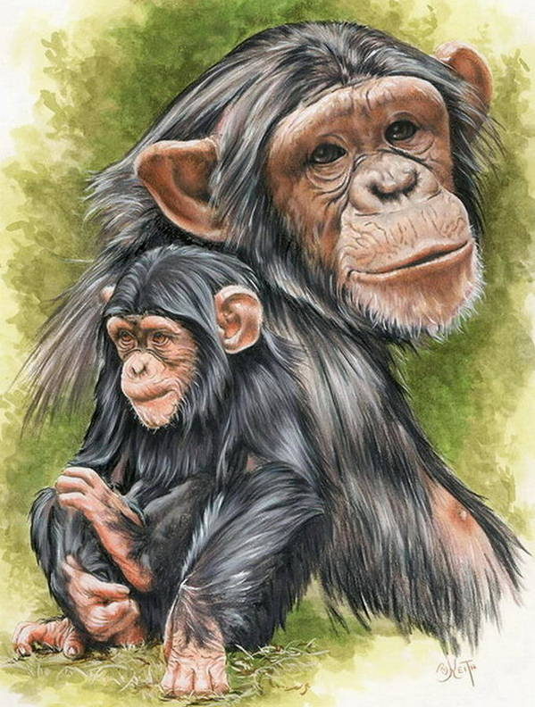 Chimpanzee Poster featuring the mixed media Treasure by Barbara Keith