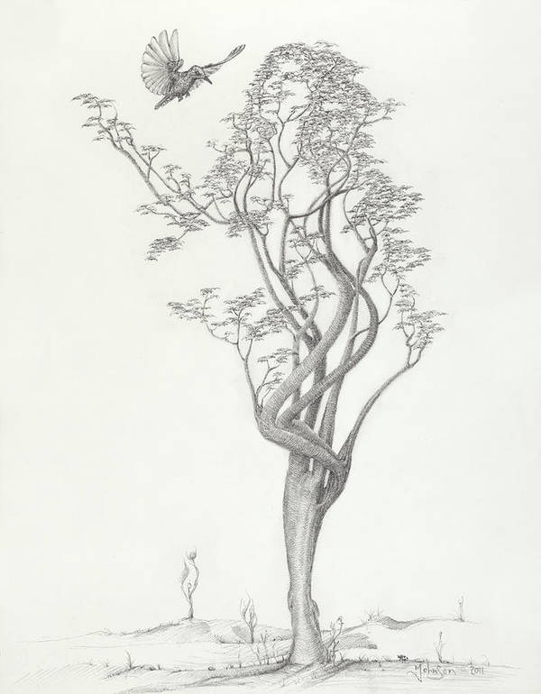 Tree Dancer Poster featuring the drawing Tree Dancer In Flight by Mark Johnson