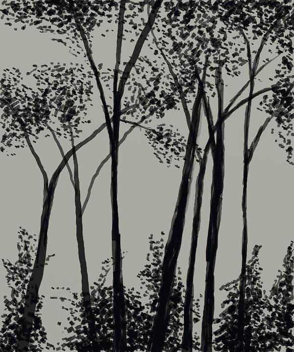 Forest Poster featuring the digital art Trees At Dusk  by David Michael Schmidt