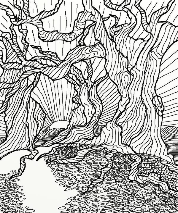 Line.drawing Poster featuring the digital art Trees In The Woods  by David Michael Schmidt