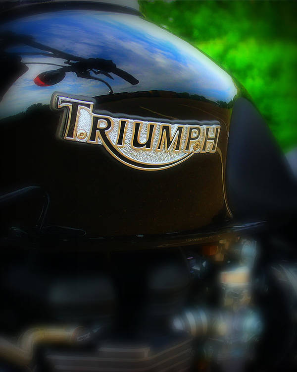 Triumph Poster featuring the photograph Triumph by Perry Webster