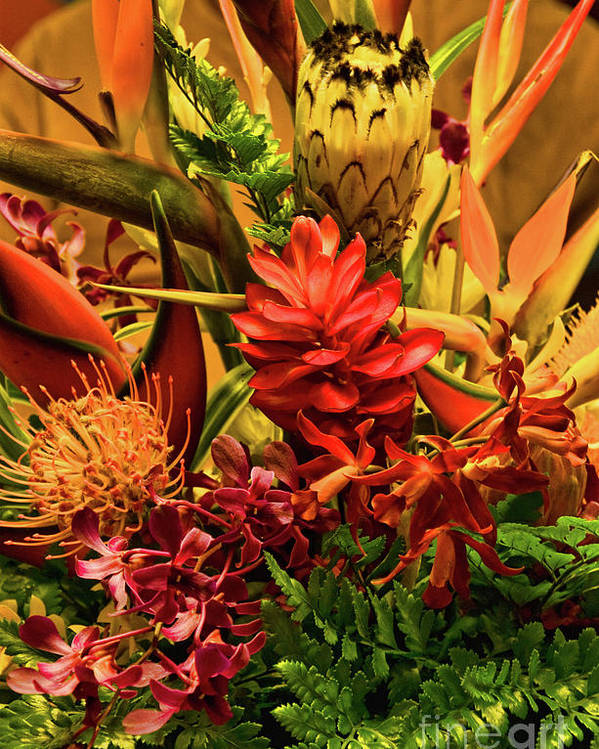 Orange Poster featuring the photograph Tropical Flowers by Peggy Starks