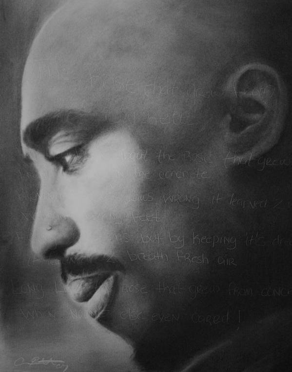 Tupac Poster featuring the drawing Tupac Rose by Adrian Pickett