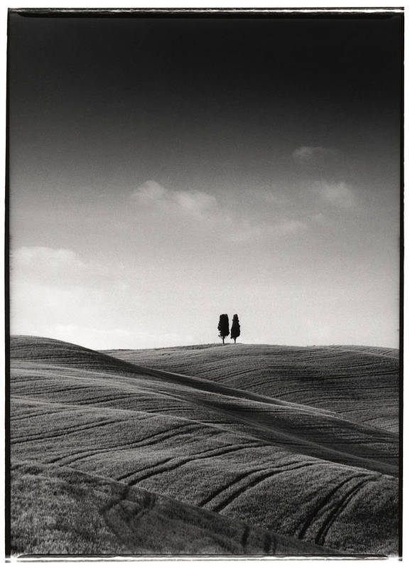 Tuscany Poster featuring the photograph Tuscany Twin Cypresses by Michael Hudson