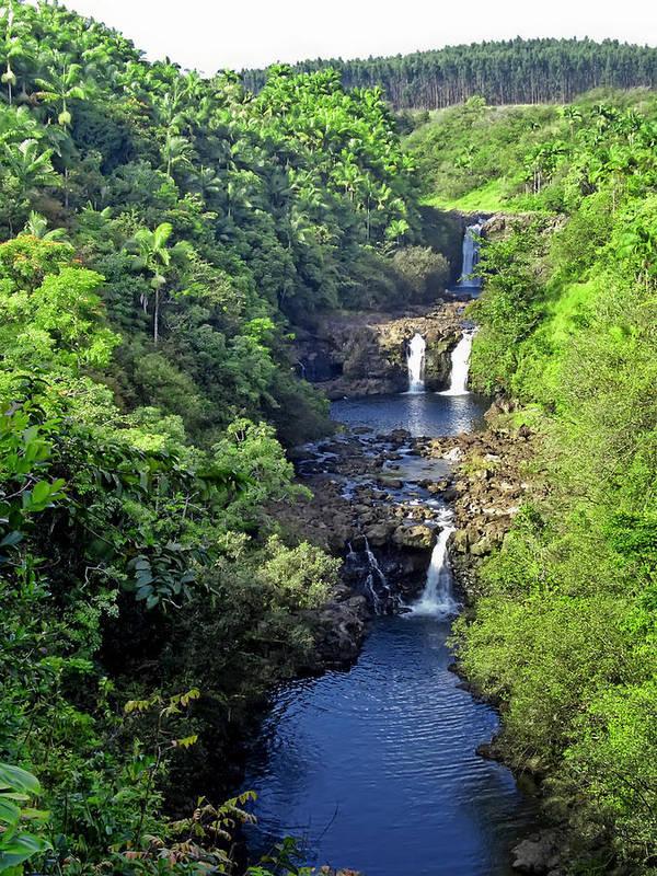 Umauma Poster featuring the photograph Umauma Falls Hawaii by Daniel Hagerman