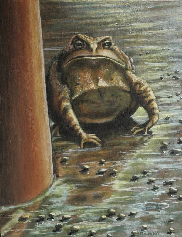 Toad Poster featuring the painting Under The Boardwalk by Colleen Maas-Pastore