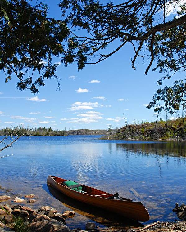 Boundary Waters Canoe Area Wilderness Poster featuring the photograph Under The Cedars by Larry Ricker