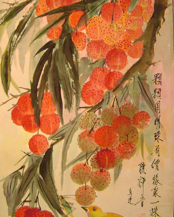 Water Colour Poster featuring the painting Under The Lichee Tree by Lian Zhen