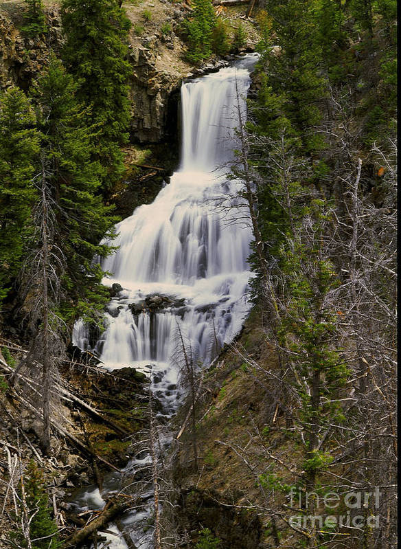 Waterfall Poster featuring the photograph Undine Falls On Lava Creek by Dennis Hammer