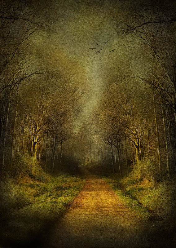 Fantasy Poster featuring the digital art Unknown Footpath by Svetlana Sewell