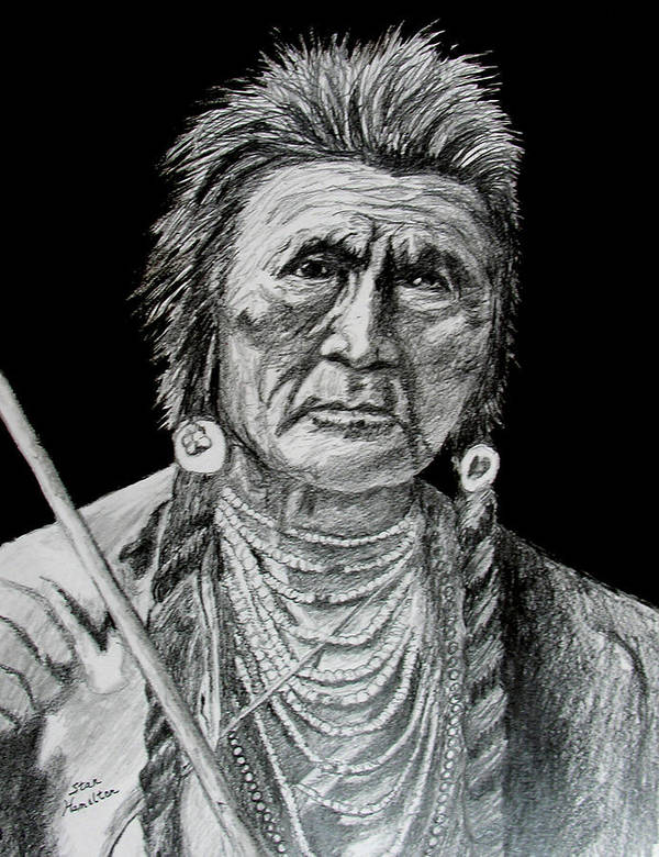 Portrait Poster featuring the drawing Unknown Indian V by Stan Hamilton