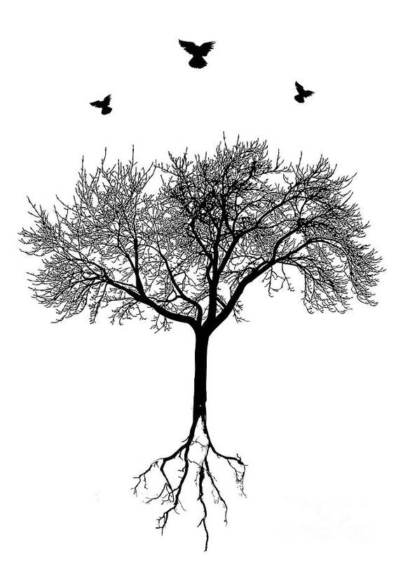 Tree Poster featuring the digital art Untitled No.63-01 by Caio Caldas