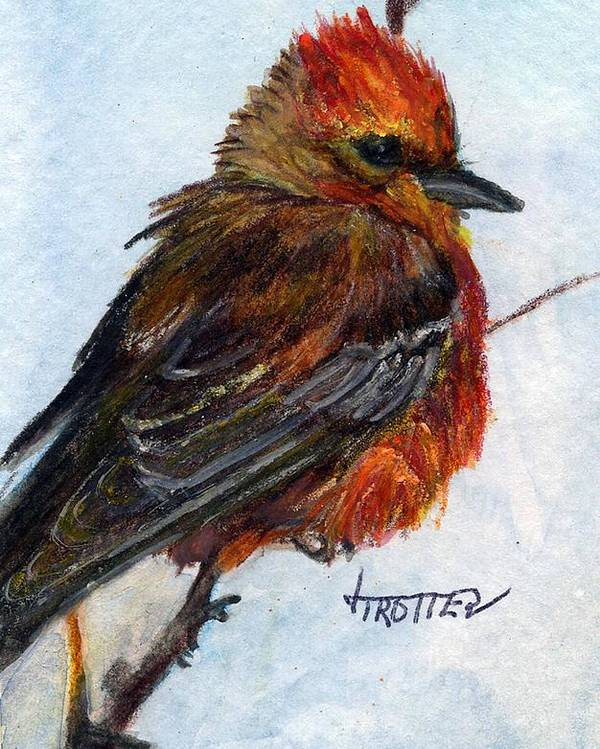 Animal Poster featuring the painting Vermillion Flycatcher by Jimmie Trotter