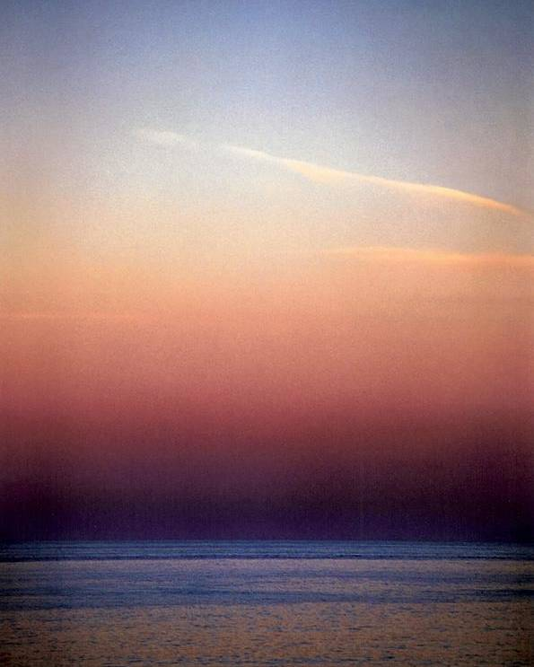 Landscape Poster featuring the photograph Vertical Number 1 by Sandra Gottlieb