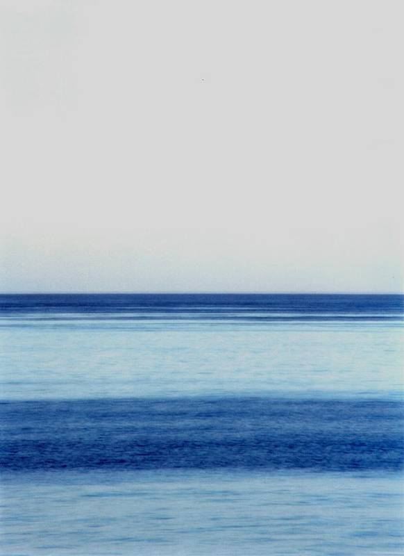Landscape Poster featuring the photograph Vertical Number 14 by Sandra Gottlieb