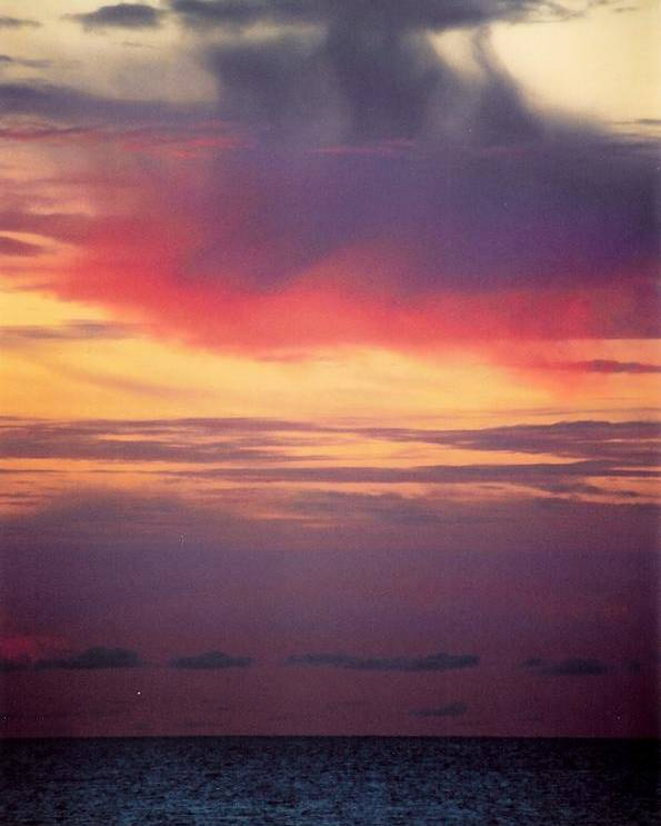 Landscape Poster featuring the photograph Vertical Number 2 by Sandra Gottlieb