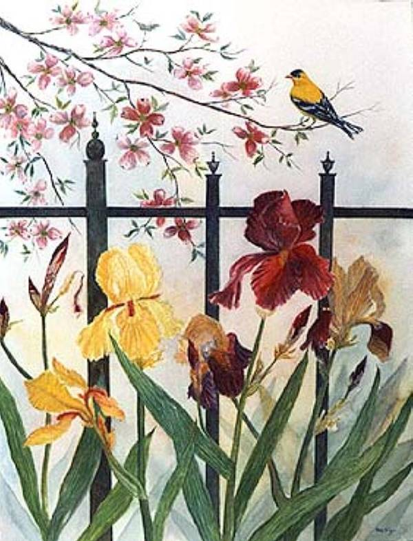 Irises; American Goldfinch; Dogwood Tree Poster featuring the painting Victorian Garden by Ben Kiger