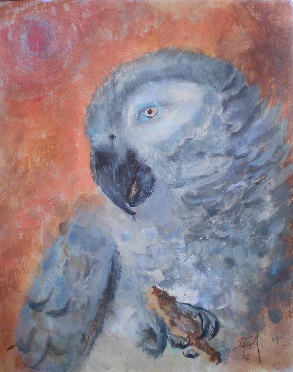 African Grey Parrot Poster featuring the painting Vinny by Bryan Alexander