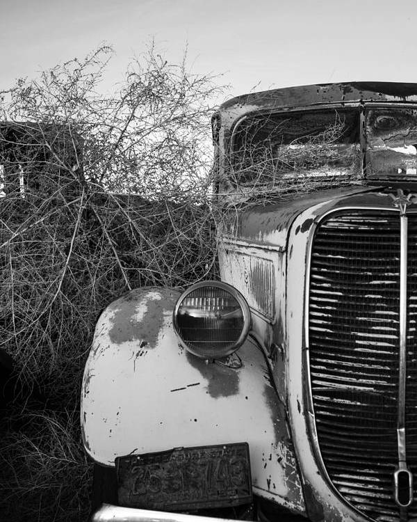 36 Ford Pickup Poster featuring the photograph Vintage '36 by Nancy Treib