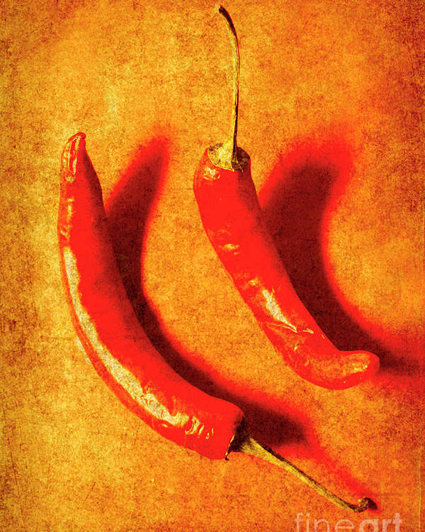 Spice Poster featuring the photograph Vintage Hot Curry Peppers by Jorgo Photography - Wall Art Gallery