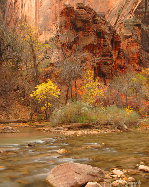 Utah Poster featuring the photograph Virgin River At The Narrows by Dennis Hammer