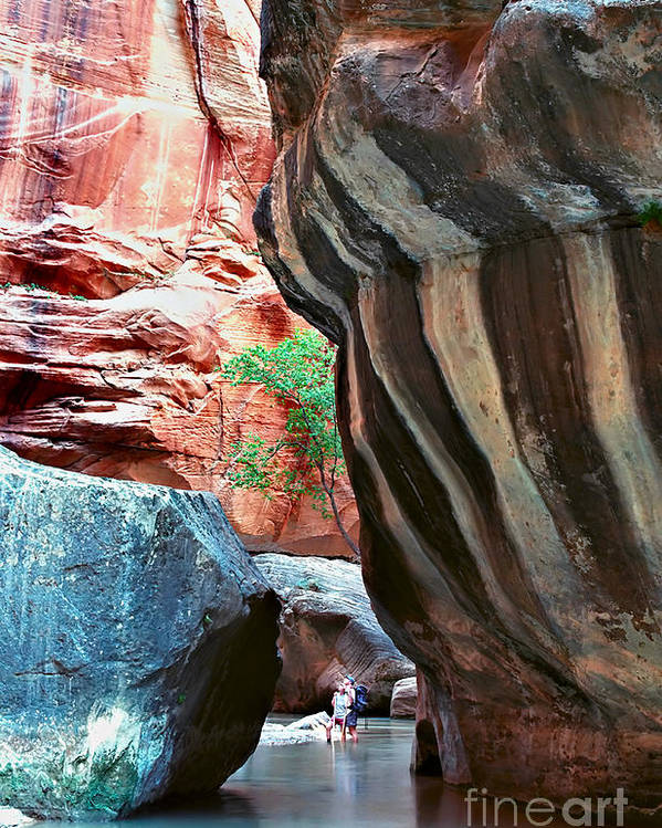 Landscape Poster featuring the photograph Virgin River Narrows by Carl Jackson