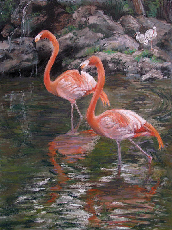 Animals Poster featuring the pastel Wading Beauties by Ann Caudle