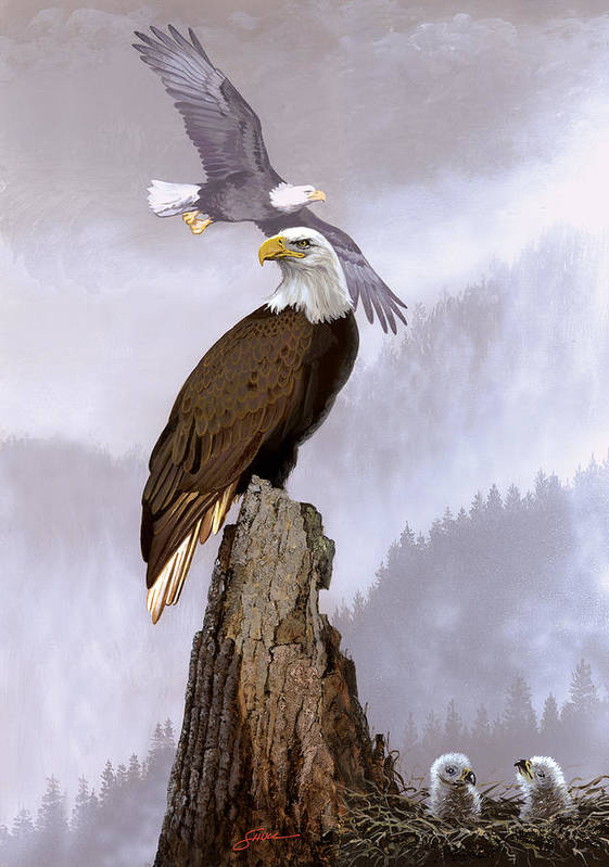 Wildlife Poster featuring the painting Wake Up Call by Harold Shull