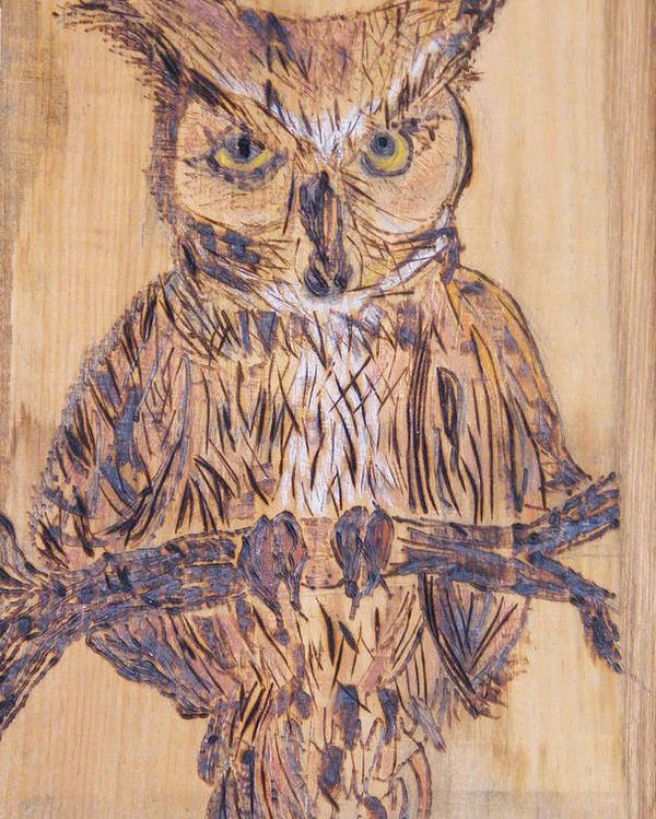 Owls Woodburns Nature Poster featuring the pyrography Watching You by Margaret G Calenda