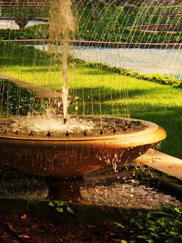 Landscape Poster featuring the photograph Water Fountain Garden by Eric Schiabor
