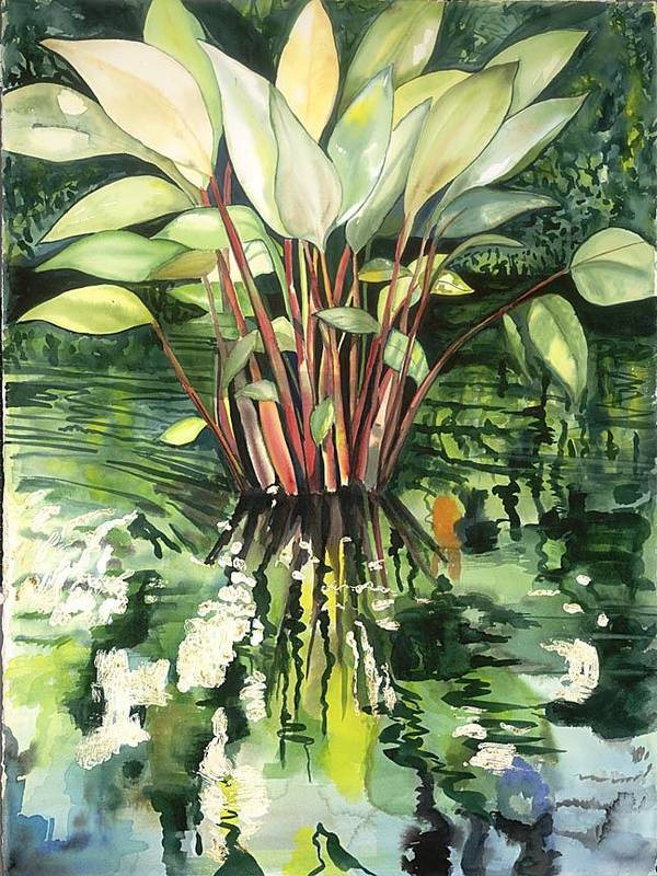 Foliage In A Pond Poster featuring the painting Water Plant by Ileana Carreno