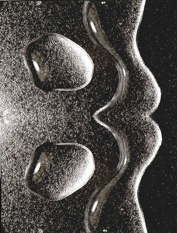 Water Poster featuring the photograph Waterdrop 1 by Nancy Mueller