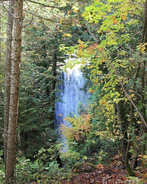 Water Poster featuring the photograph Waterfall Beyond The Trees by Brenda Ackerman