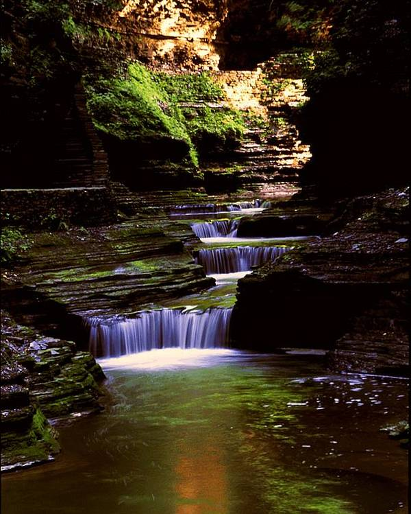 Gorge Poster featuring the photograph Watkins Glen Gorge In Summer by Roger Soule