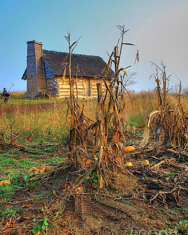 Log Cabin Old Country Harvest Related Tags: Cabin Artwork Poster featuring the photograph Way Back When by Robert Pearson