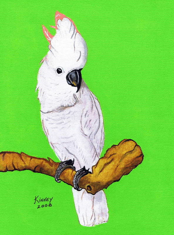 Parrot Poster featuring the painting White Cockatoo by Jay Kinney