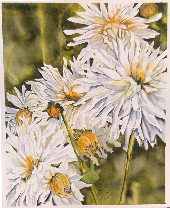 White Poster featuring the painting White Dahlias by Diane Ziemski